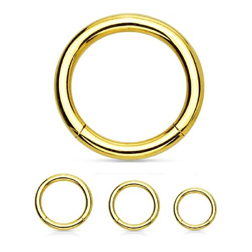 Gold Plated Segment Ring